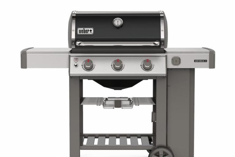 Best Budget Gas Grill – Cheap | Affordable | Reasonably Priced BBQ Review [2021]